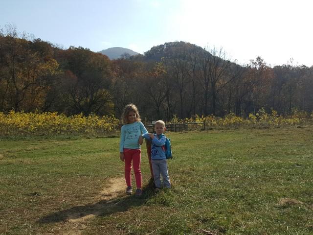 An Afternoon Hike